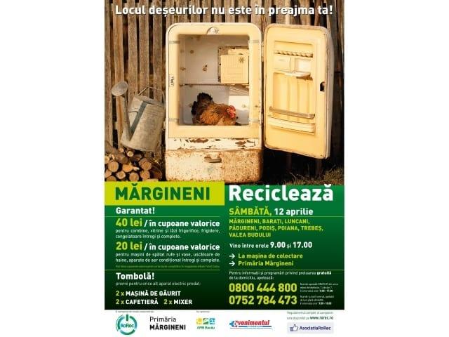 CAMPANIE DE ECOLOGIZARE A COMUNEI - 12 APRILIE 2014